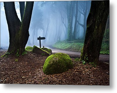 Metal Print featuring the photograph That Way by Jorge Maia