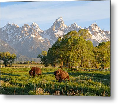 Metal Print featuring the photograph The American West by Aaron Spong
