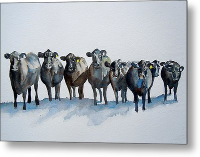 The Angus Eight Metal Print by Sharon Mick