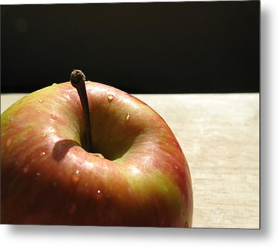 Metal Print featuring the photograph The Apple Stem by Kim Pascu