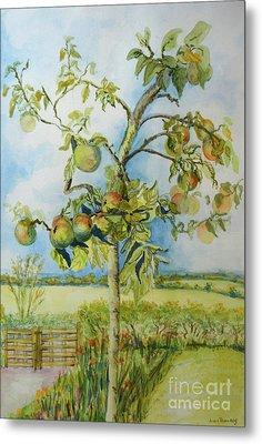 The Apple Tree Metal Print by Joan Thewsey