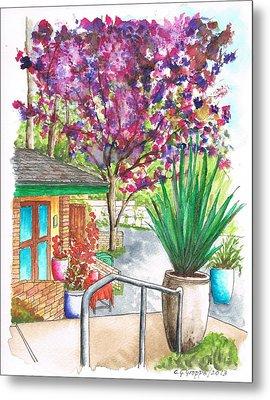 The Arboretum Gift Shop In Arcadia-california Metal Print by Carlos G Groppa