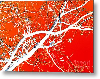 The Asian Tree Metal Print