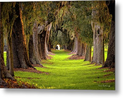 Metal Print featuring the photograph The Avenue Of Oaks 4 St Simons Island Ga Art by Reid Callaway