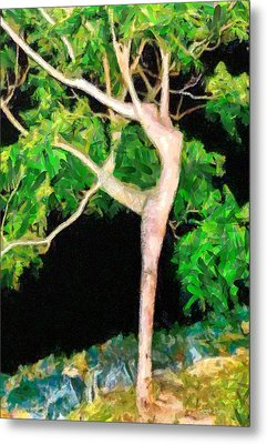 The Ballerina Tree - Pa Metal Print by Leonardo Digenio