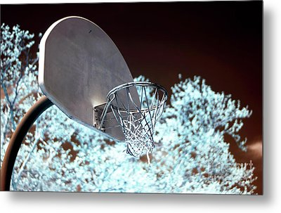 The Basket Metal Print by John Rizzuto