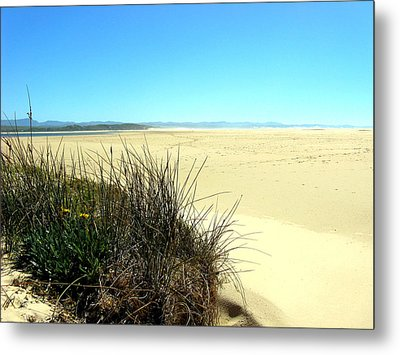 Metal Print featuring the photograph The Beach by Riana Van Staden