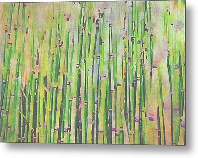 The Beauty Of A Bamboo Fence Metal Print