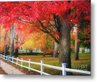 The Beauty Of Autumn In New England Metal Print