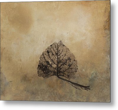 The Beauty Of Decay Metal Print