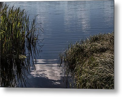 Metal Print featuring the photograph The Beginning by Odd Jeppesen