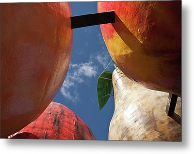 Metal Print featuring the photograph The Big Fruit by Odille Esmonde-Morgan