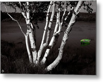 The Birch And The Green Dingy Metal Print