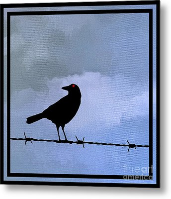 The Black Crow Knows Blue Metal Print by Edward Fielding