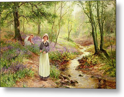 The Bluebell Glade Metal Print by Ernest Walbourn