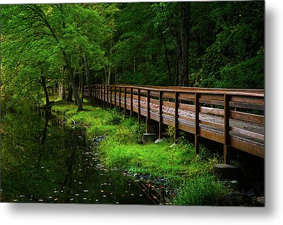 Metal Print featuring the photograph The Bridge At Wolfe Park by Karol Livote