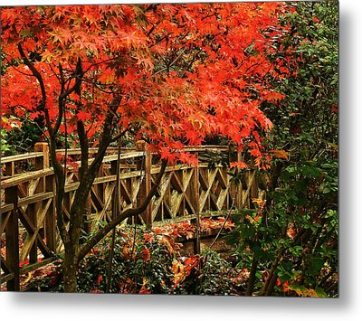 The Bridge In The Park Metal Print by Connie Handscomb