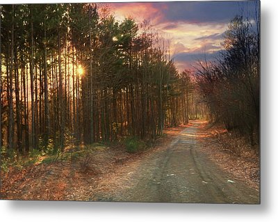 Metal Print featuring the photograph The Brown Path Before Me by Lori Deiter