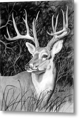 The Buck Metal Print