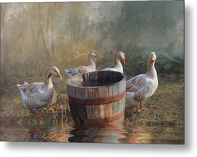 Metal Print featuring the photograph The Bucket Brigade by Robin-lee Vieira