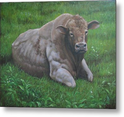 The Bull Metal Print by Stephen Howell