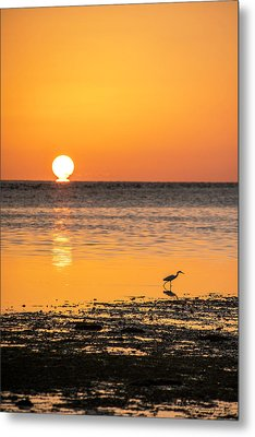 The Calm Side Metal Print by Marvin Spates
