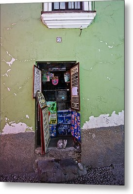 Metal Print featuring the photograph The Cat In The Doorway by Ron Dubin