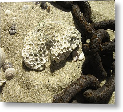The Chain And The Fossil Metal Print by Trish Tritz