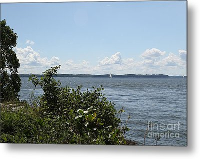 The Chesapeake From Turkey Point Metal Print