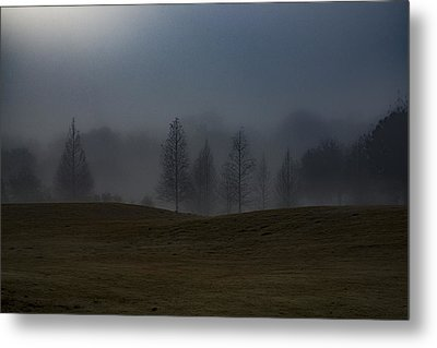 Metal Print featuring the photograph The Chosen by Annette Berglund