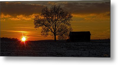 Metal Print featuring the photograph The Circle Of Life by Skip Tribby