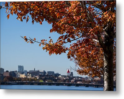 The Citgo Sign Through The Trees Boston Ma Charles River 2 Metal Print by Toby McGuire