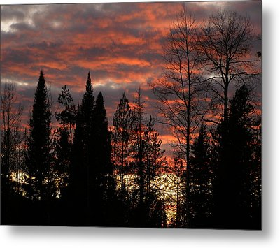 Metal Print featuring the photograph The Close Of Day by DeeLon Merritt