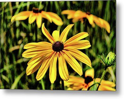 Metal Print featuring the photograph The Colors And Details by Monte Stevens