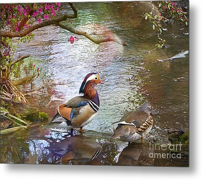 Metal Print featuring the photograph The Colours Of Spring by LemonArt Photography