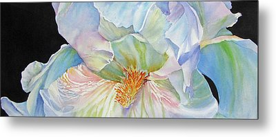 The-colours-of-white Metal Print by Nancy Newman