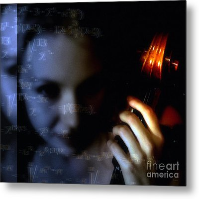 The Composer  Metal Print by Steven Digman