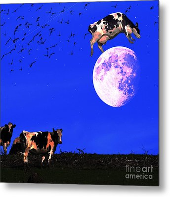 The Cow Jumped Over The Moon . Square Metal Print by Wingsdomain Art and Photography