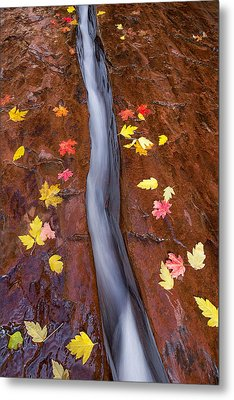 Metal Print featuring the photograph The Crack by Patricia Davidson