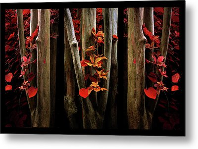 Metal Print featuring the photograph The Crimson Forest by Jessica Jenney