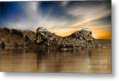 Metal Print featuring the photograph The Crocodile by Christine Sponchia