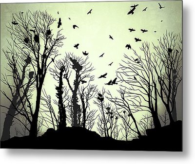 The Crows Roost - Evening Shades Metal Print by Philip Openshaw