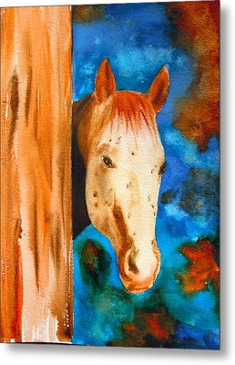 The Curious Appaloosa Metal Print by Sharon Mick
