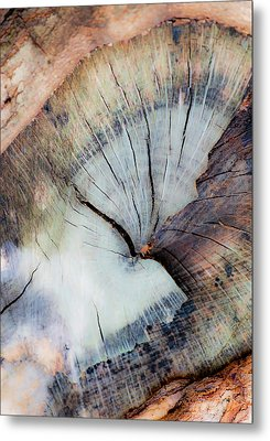 Metal Print featuring the photograph The Cut by Stephen Anderson