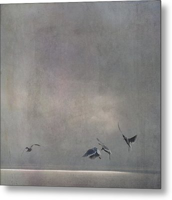 Metal Print featuring the photograph The Dance by Sally Banfill