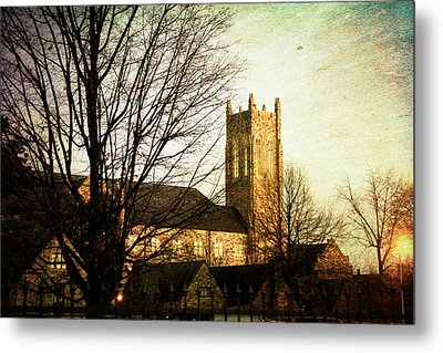 The Dawning  Metal Print by Suzanne Barber