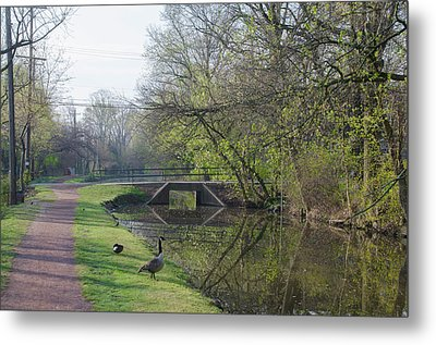 The Delaware Canal - Morrisville Pennsylvania Metal Print by Bill Cannon