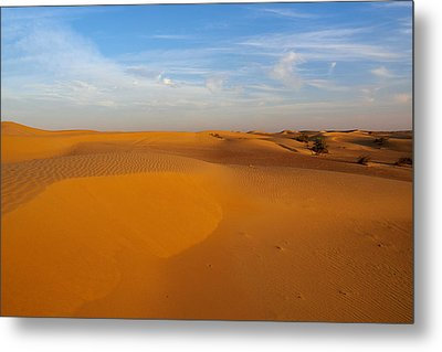 The Desert  Metal Print