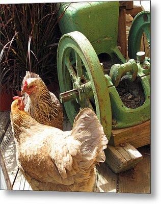 The Discussion Metal Print by Barbara McDevitt