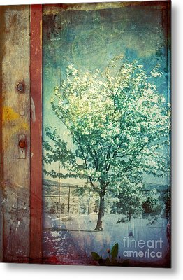 The Door And The Tree Metal Print by Tara Turner